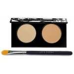 Julie Hewett Omit Your Flaws Duo Light/Medium w Brush